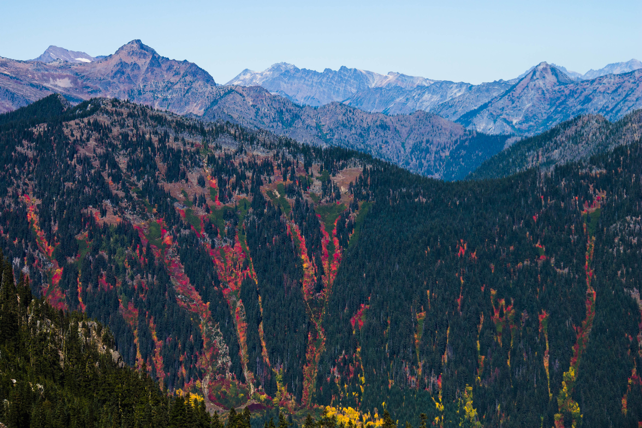 Glorious fall color on display from across Theseus Lake