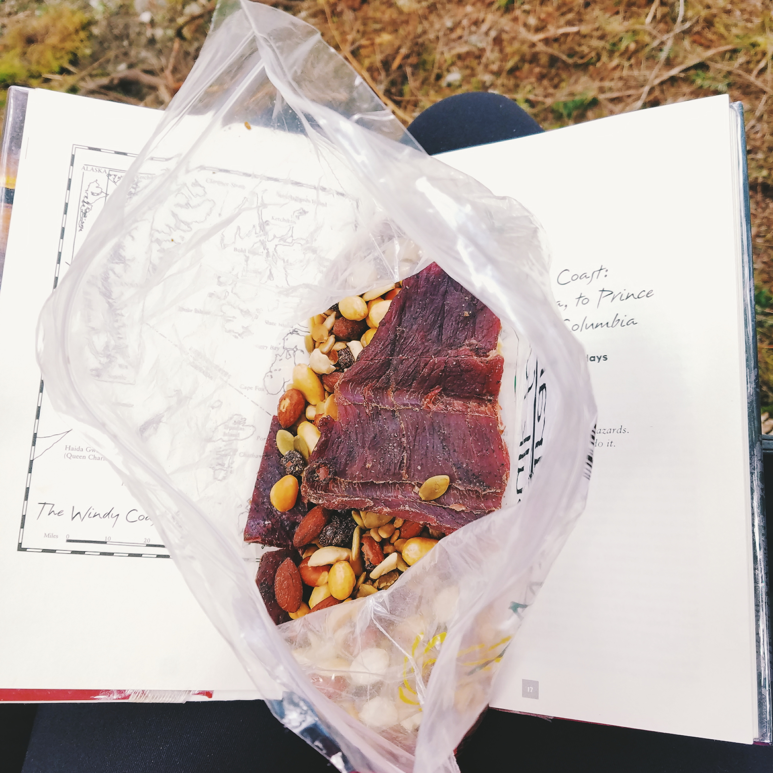 Trail lunch: gorp with a few hunks of jerky thrown in