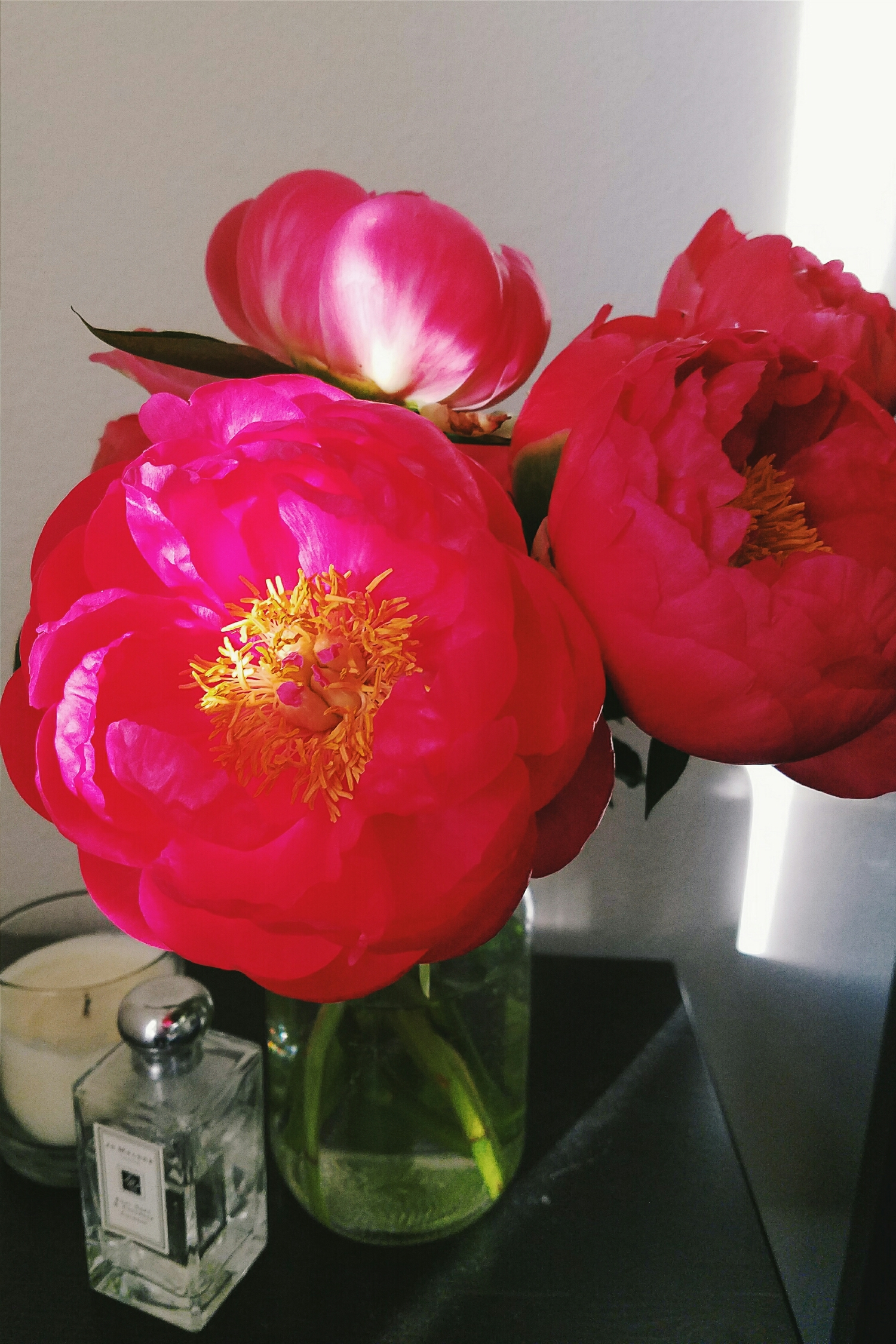 The first farmer's market peonies of the year