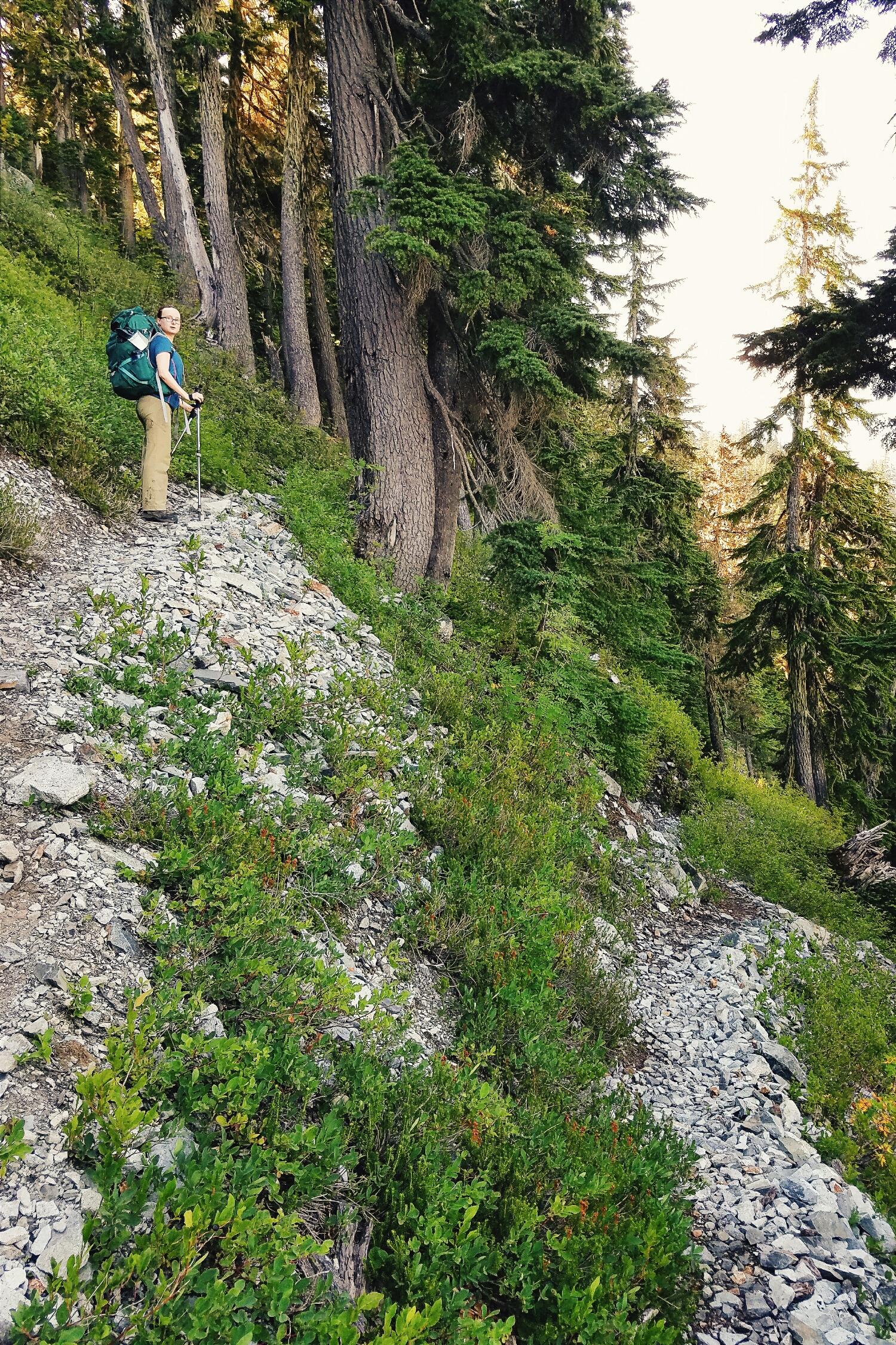 STEEP switchbacks to start the hike home