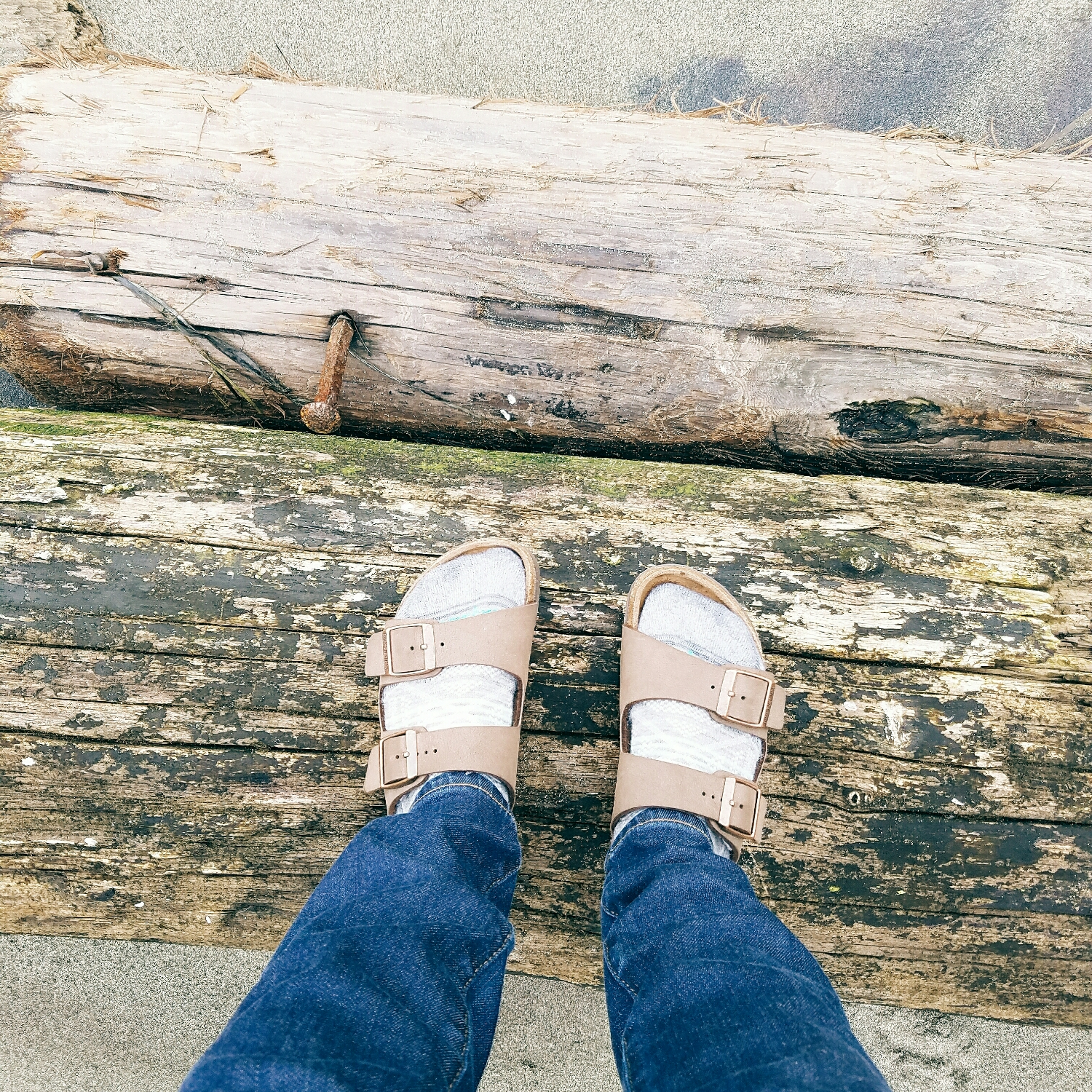 sandals & socks - the perfect beach look!