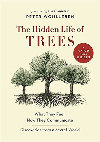 The Hidden Life of trees by peter wohlleben - In The Hidden Life of Trees, Peter Wohlleben shares his deep love of woods and forests and explains the amazing processes of life, death, and regeneration he has observed in the woodland and the amazing scientific processes behind the wonders of which we are blissfully unaware. Much like human families, tree parents live together with their children, communicate with them, and support them as they grow, sharing nutrients with those who are sick or struggling and creating an ecosystem that mitigates the impact of extremes of heat and cold for the whole group. As a result of such interactions, trees in a family or community are protected and can live to be very old. In contrast, solitary trees, like street kids, have a tough time of it and in most cases die much earlier than those in a group.Drawing on groundbreaking new discoveries, Wohlleben presents the science behind the secret and previously unknown life of trees and their communication abilities; he describes how these discoveries have informed his own practices in the forest around him. As he says, a happy forest is a healthy forest, and he believes that eco-friendly practices not only are economically sustainable but also benefit the health of our planet and the mental and physical health of all who live on Earth.  (From Goodreads)