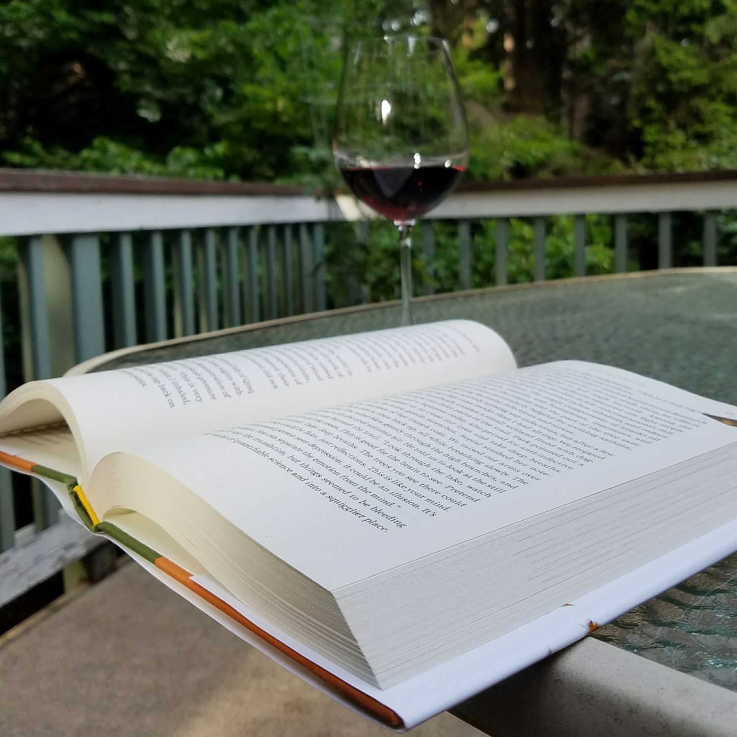 Reading outside at 7 PM - what luxury!