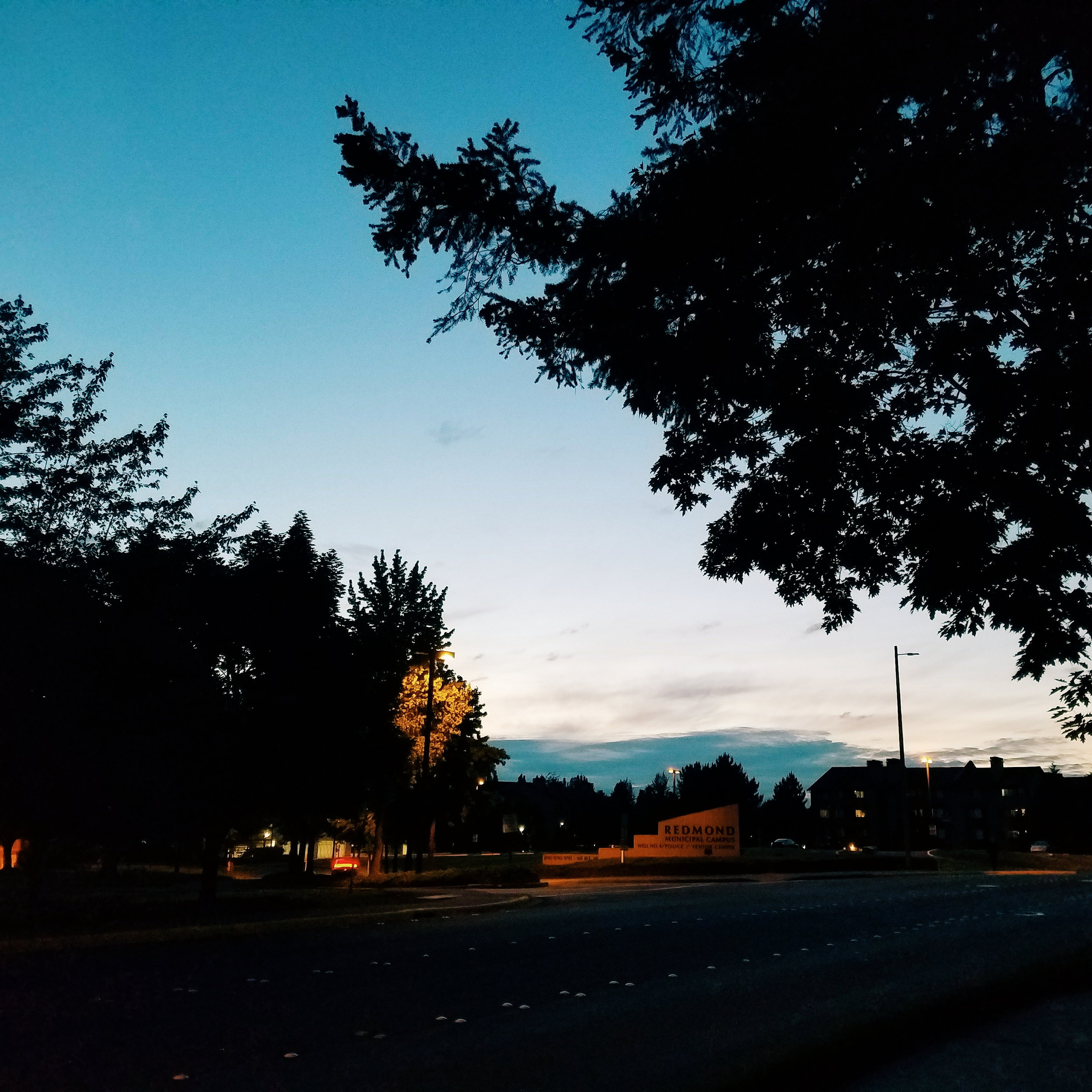 Redmond at 9:30 PM. I love these long days!