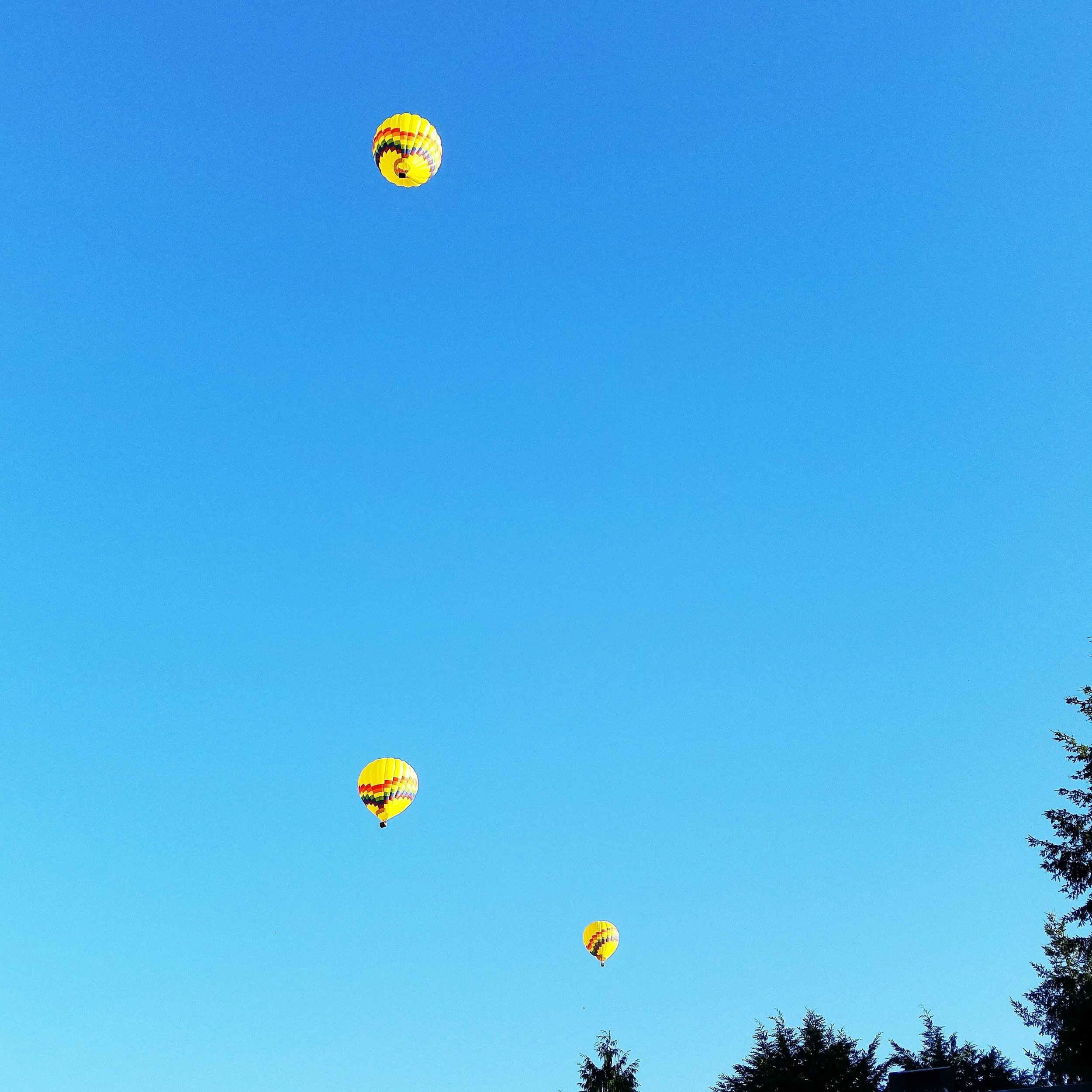 Hot air balloons passing over the deck at my parents house