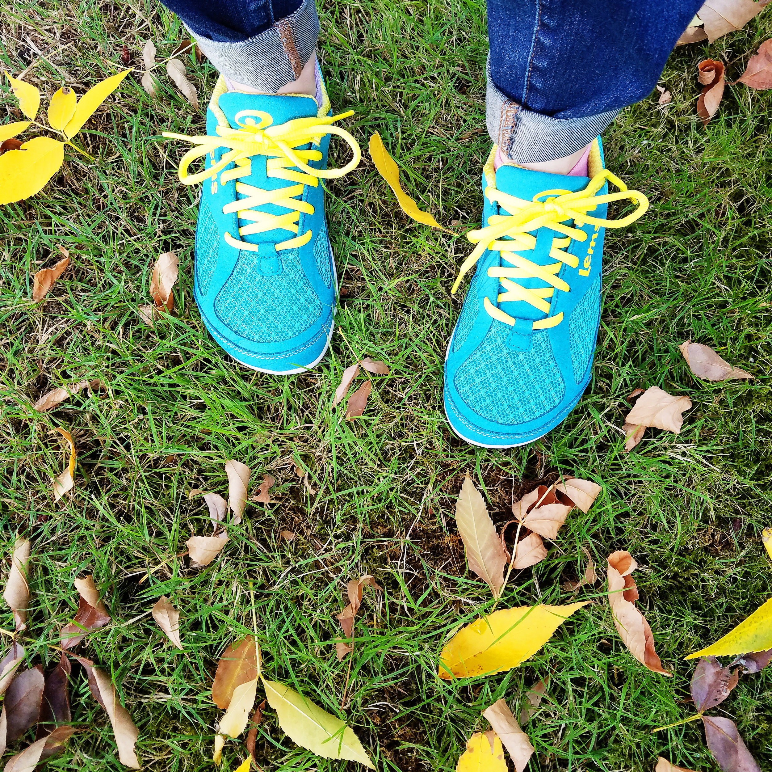 Love my cute new shoes, and the laces match the golden leaves outside my apartment!