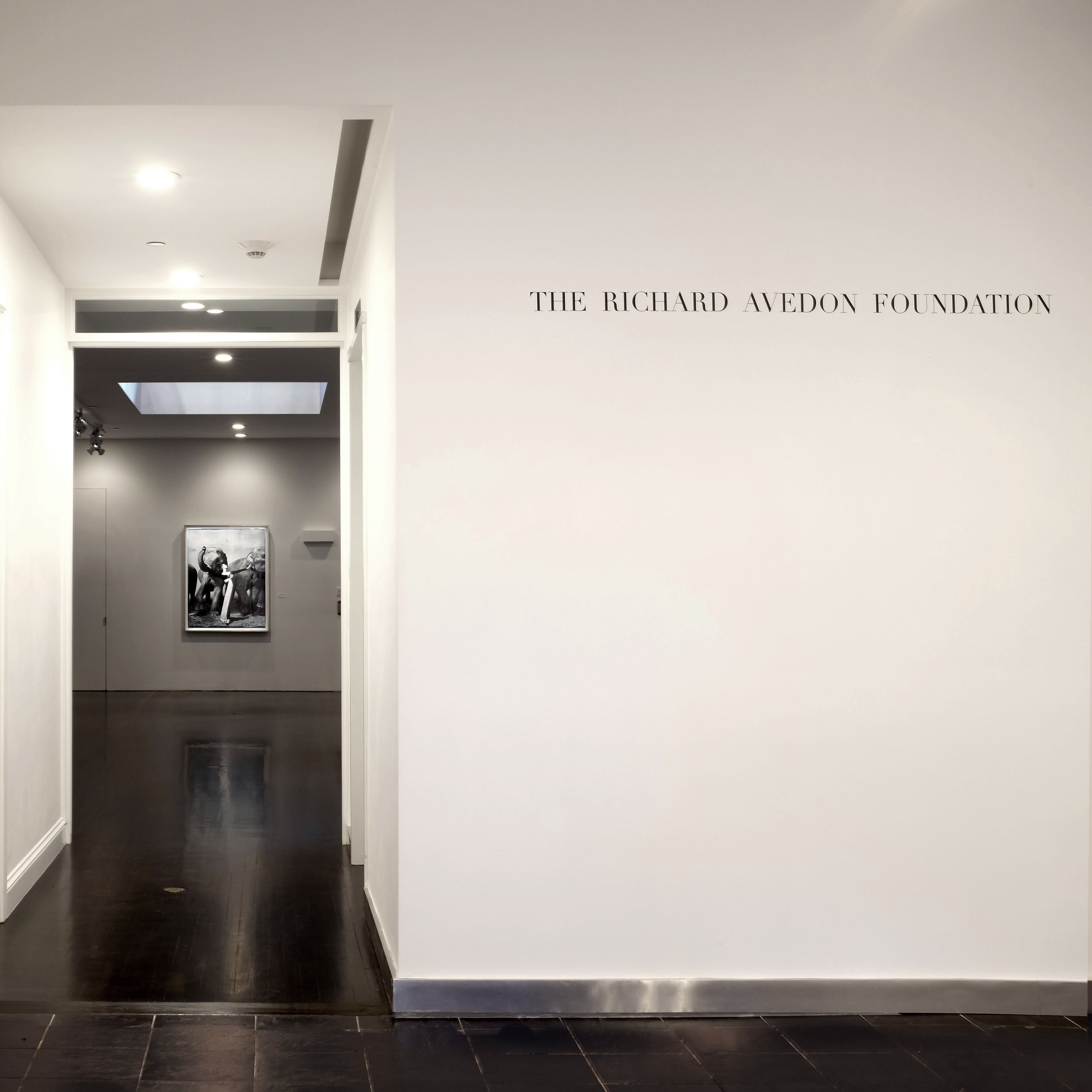 2016 10 11 Richard Avedon Foundation install.jpg