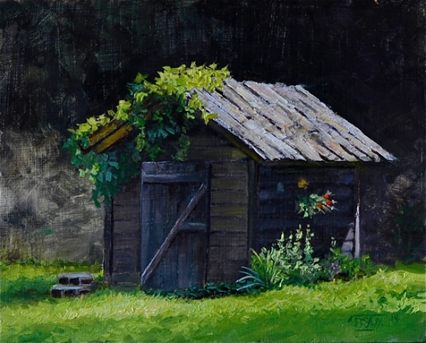 """Shed in the Watershed - Arkansas"""
