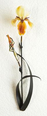 loy-allen-gold-iris.jpg