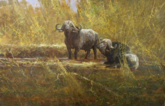 """Water Buffalo"" - Acrylic on Board - Framed - $15,000"