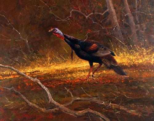 """""""Wild Turkey"""" - Acrylic on Board - Framed - $5850"""