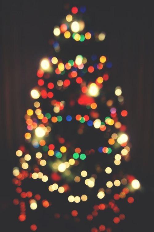 Photo Dec 04, 11 53 24 PM.jpg