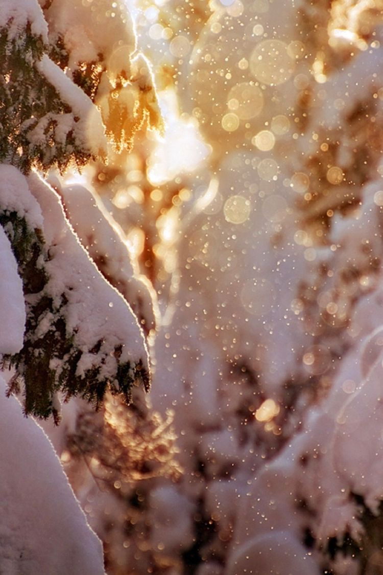 Photo Dec 05, 12 00 50 AM.jpg