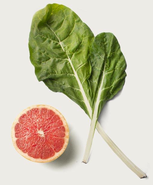 Sweet-Science-Nutrition-Hero-Img.jpg