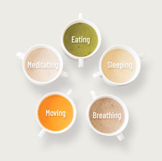 Sweet-Science-Nutrition-Five.jpg