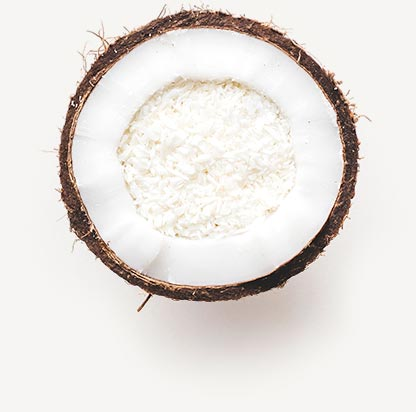 Sweet Science Coconut