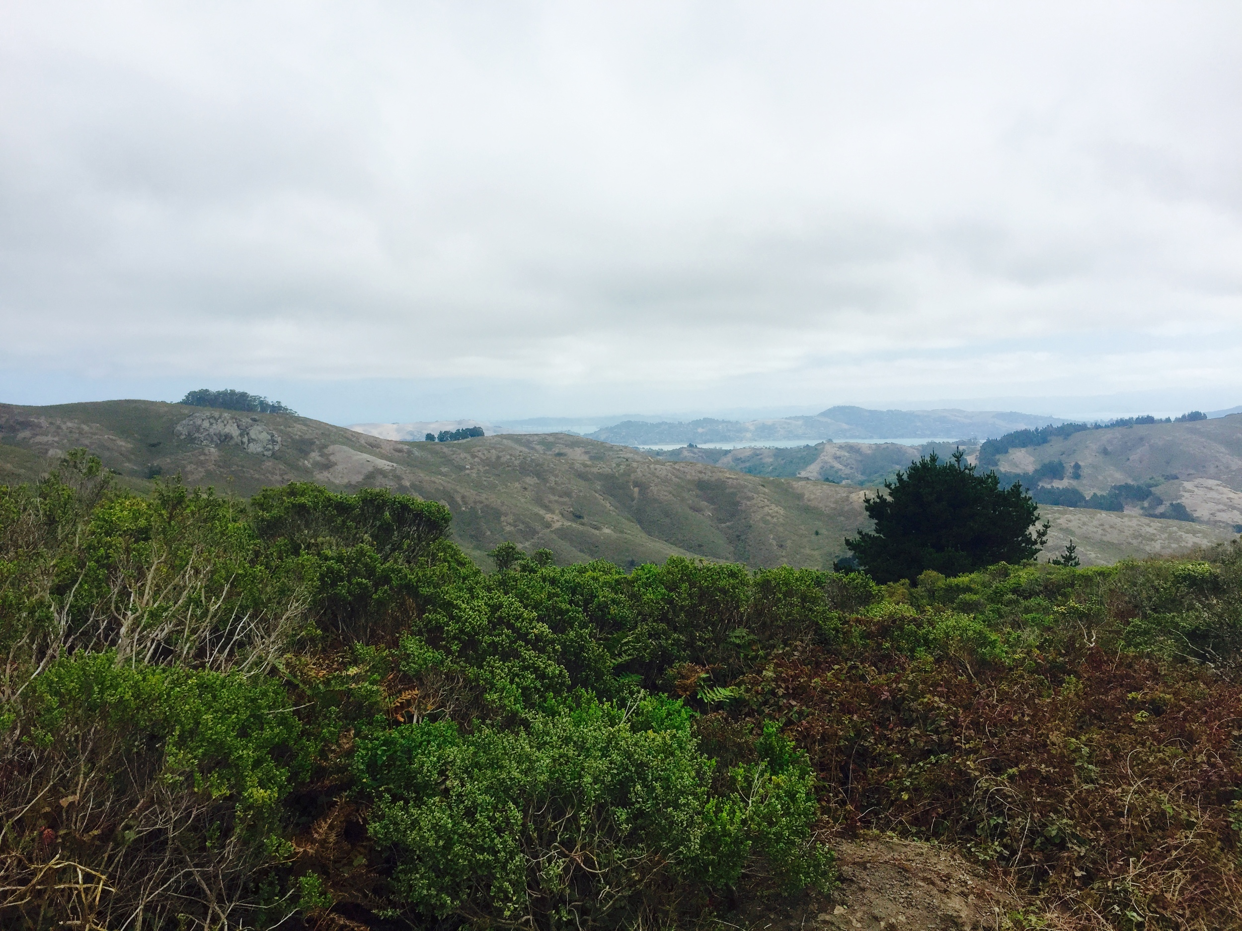View from the top of the hike.