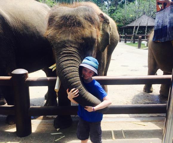 Max - loving the elephants.