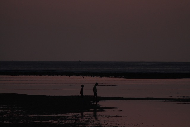 hunting for shells once the sun went down