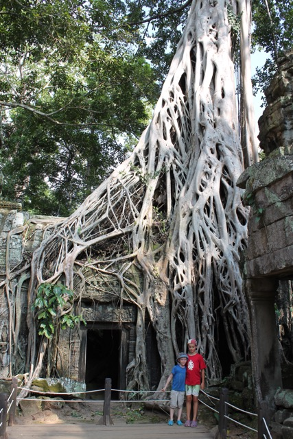 This temple is over 800 years old and the trees are 300 years old!