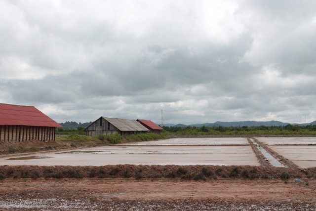 Water from the canals flows into the fields from the Gulf of Thailand.  Eventually it evaporates and the salt is left.