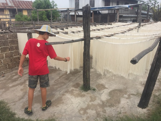 Noodles (made from rice) drying outside.