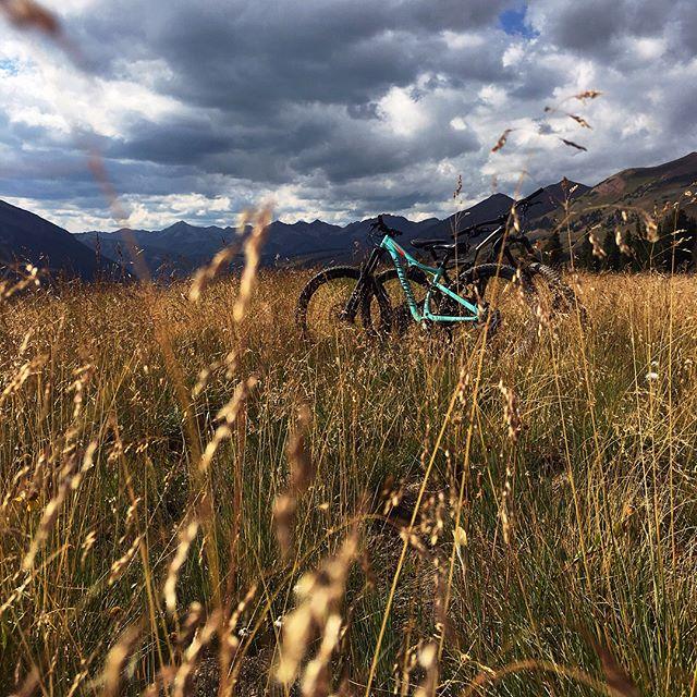 Finally got to Crested butte to check out their sweet sweet trails. #mountainbikecolorado #coloradotrails #crestedbutte #bikingat11k #ridethe401 #401trail #alpinebiking #altitudelatitude #mtblife
