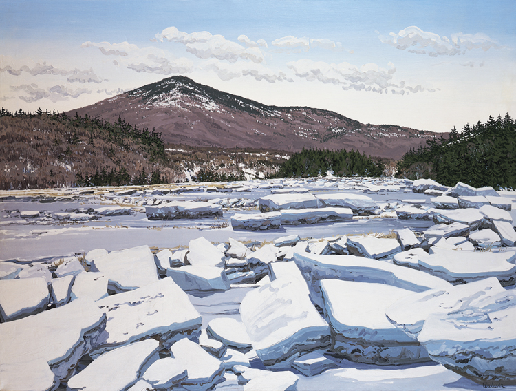 Writing Prompt for Scientific Observation Unit #4: Neil Welliever, Prospect Ice Flow, 1976, 97.3.51