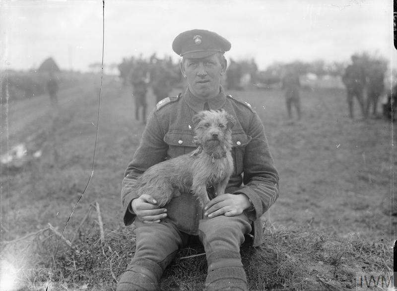 "A soldier with ""Sammy"", the mascot of 1/4th Battalion, Royal Northumberland Fusiliers. This dog went to France with the unit in April 1915, was wounded in the Second Battle of Ypres, and also gassed on Whit Monday, 1915. He was with the battalion in the trenches and injured by shell fire on several occasions. The dog was also with the battalion during the Somme offensive."