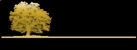 gsr-capital-management-logo-footer.png
