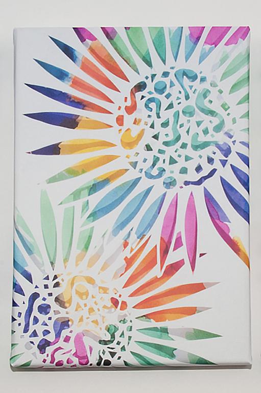 Colour Explosion Canvas.jpg