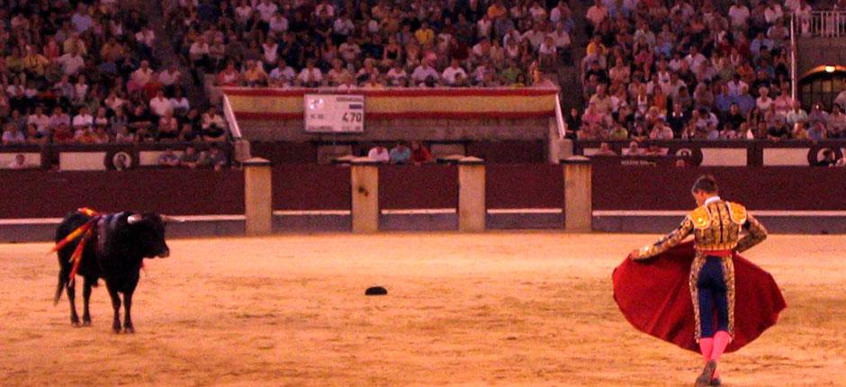 Bull and matador at Las Ventas, Madrid.