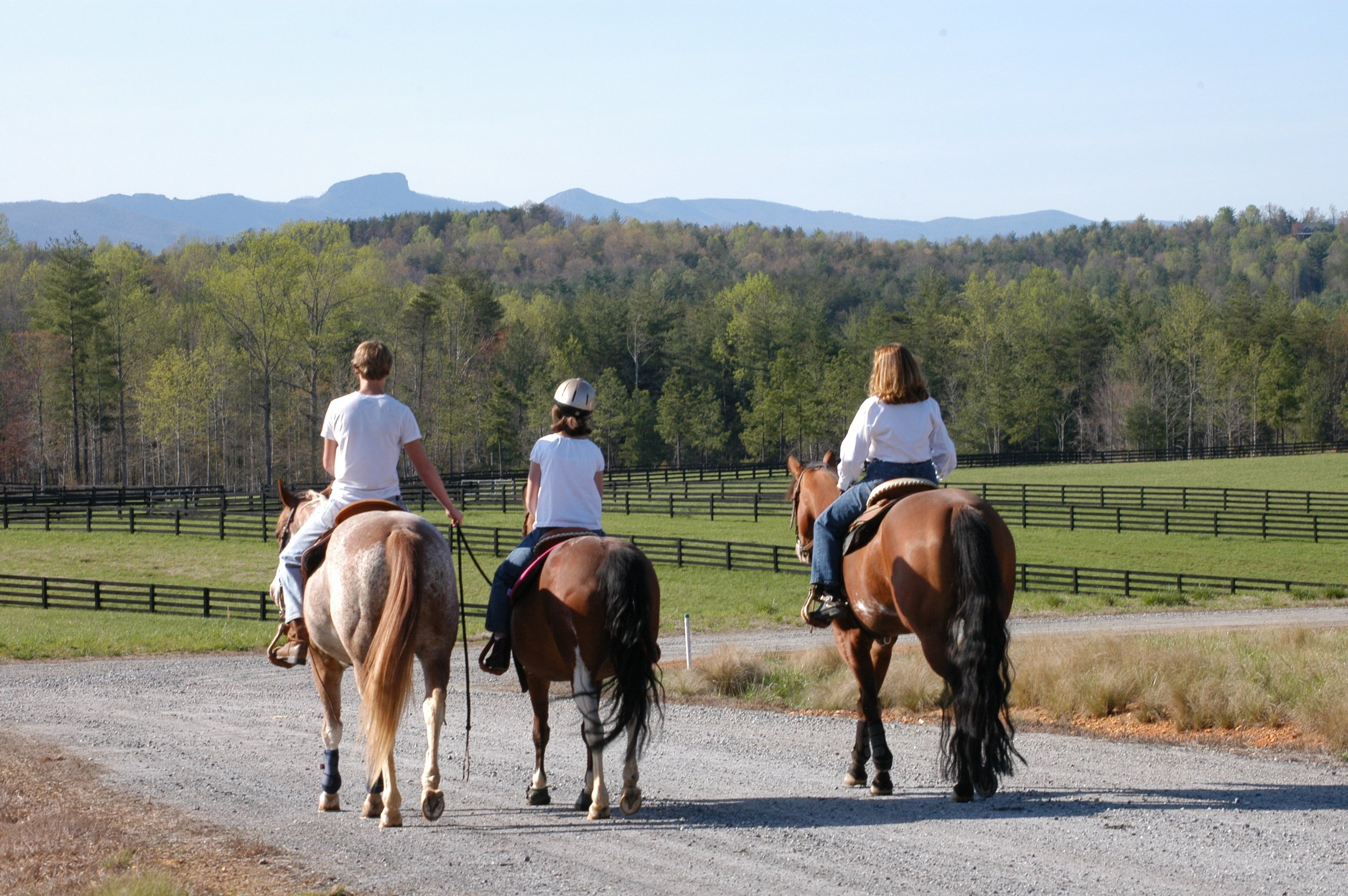 Board your horse at CRC Stables and have access to miles of horseback riding trails with mountain views.