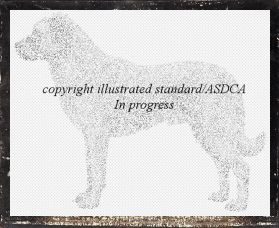 Illustrated Standard Projects STill in Progress
