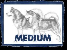 Click -Medium Enhances Purpose in Dog Drawings