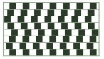 viztrick-horizontal.png