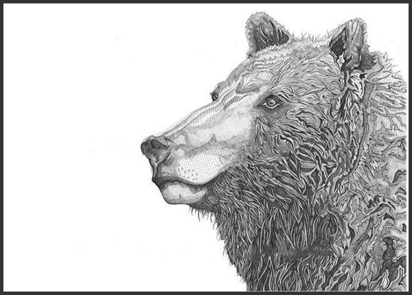 Bear Head, 2016