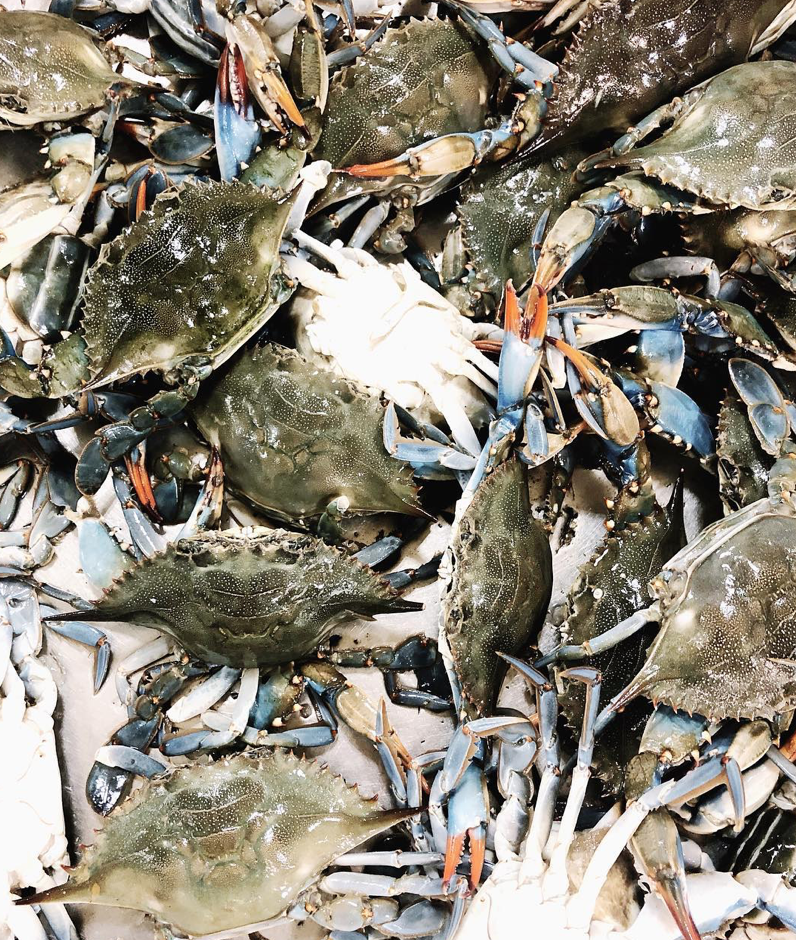 Piles on piles of blue crabs. Photo: jessgraves.com