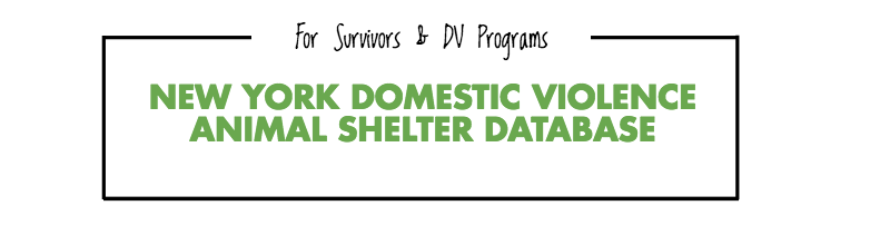 NY DV Animal Shelter Database