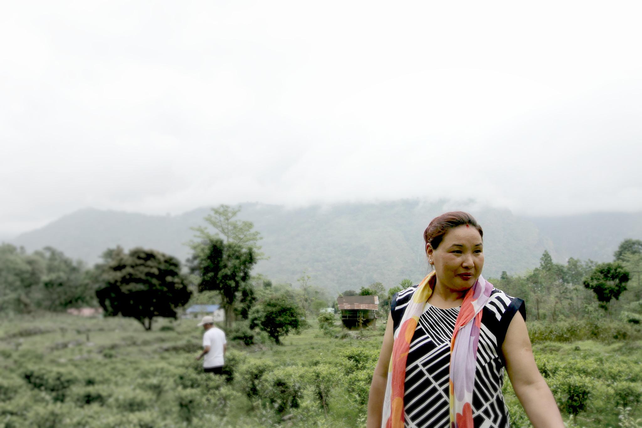 Yanku_YankTea_Darjeeling.jpg