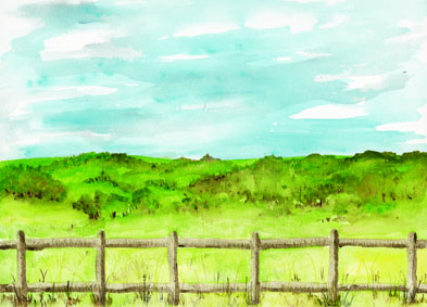 fence_TN.jpg