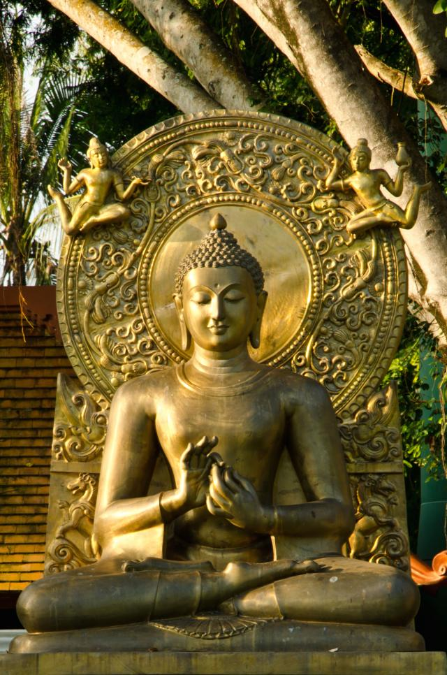 Buddha pic.jpg
