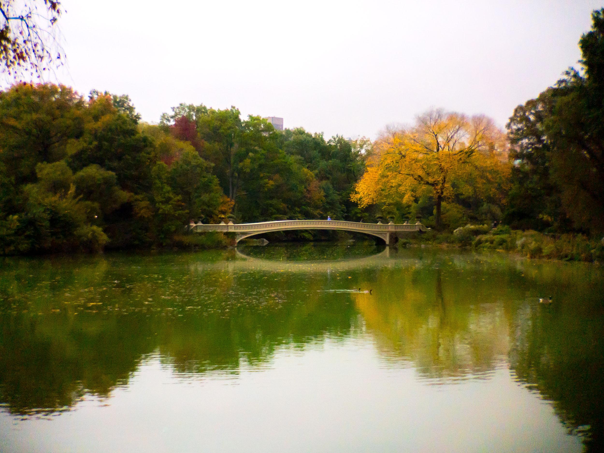 Photo Oct 21, 8 25 34 AM.jpg