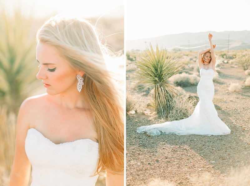 Las Vegas desert wedding pictures