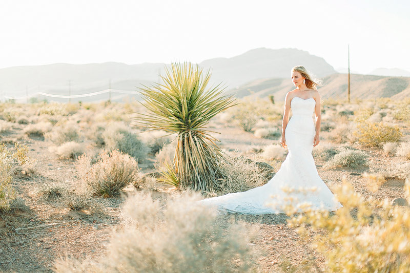 Las Vegas desert wedding photos