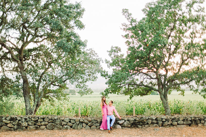 Wine Country engagement pictures