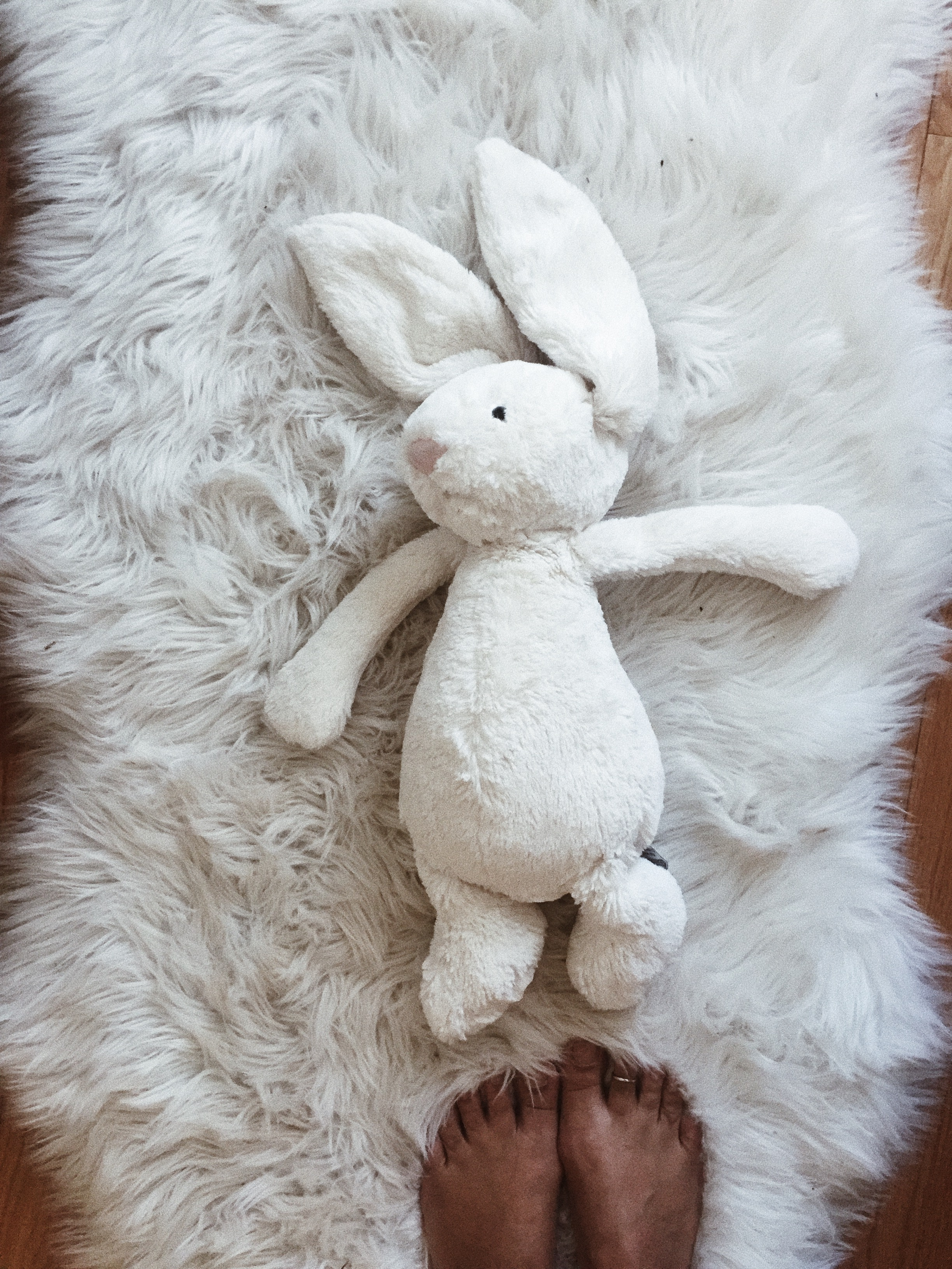 bunny standing.jpg