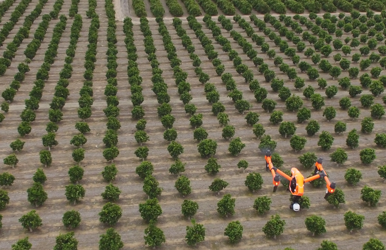 DJI Inspire 1 by FlyingAg.com  flying citrus farm in Central California use the DroneDeploy system. This platform is nice largely due to it's ability to change sensors (like Flir Sensor below) and longer flight times.  It can fly 160 acres use the DroneDeploy system which is perfect in my opinion with current regulations (within line of site).