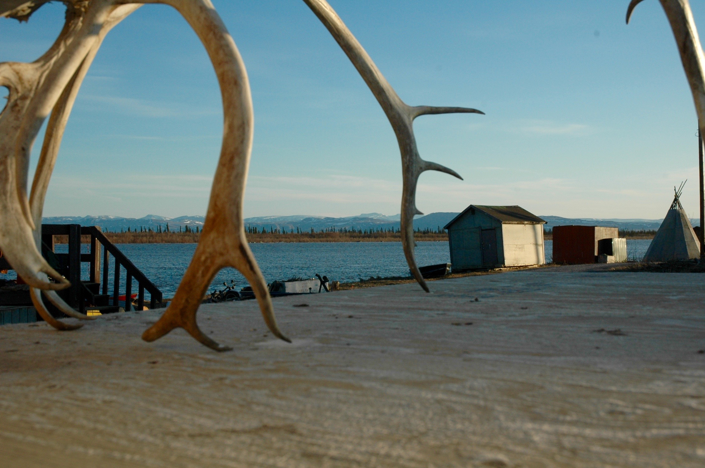 2. Antlers (Aklavik, Peel River, Richardson Mtns).jpg