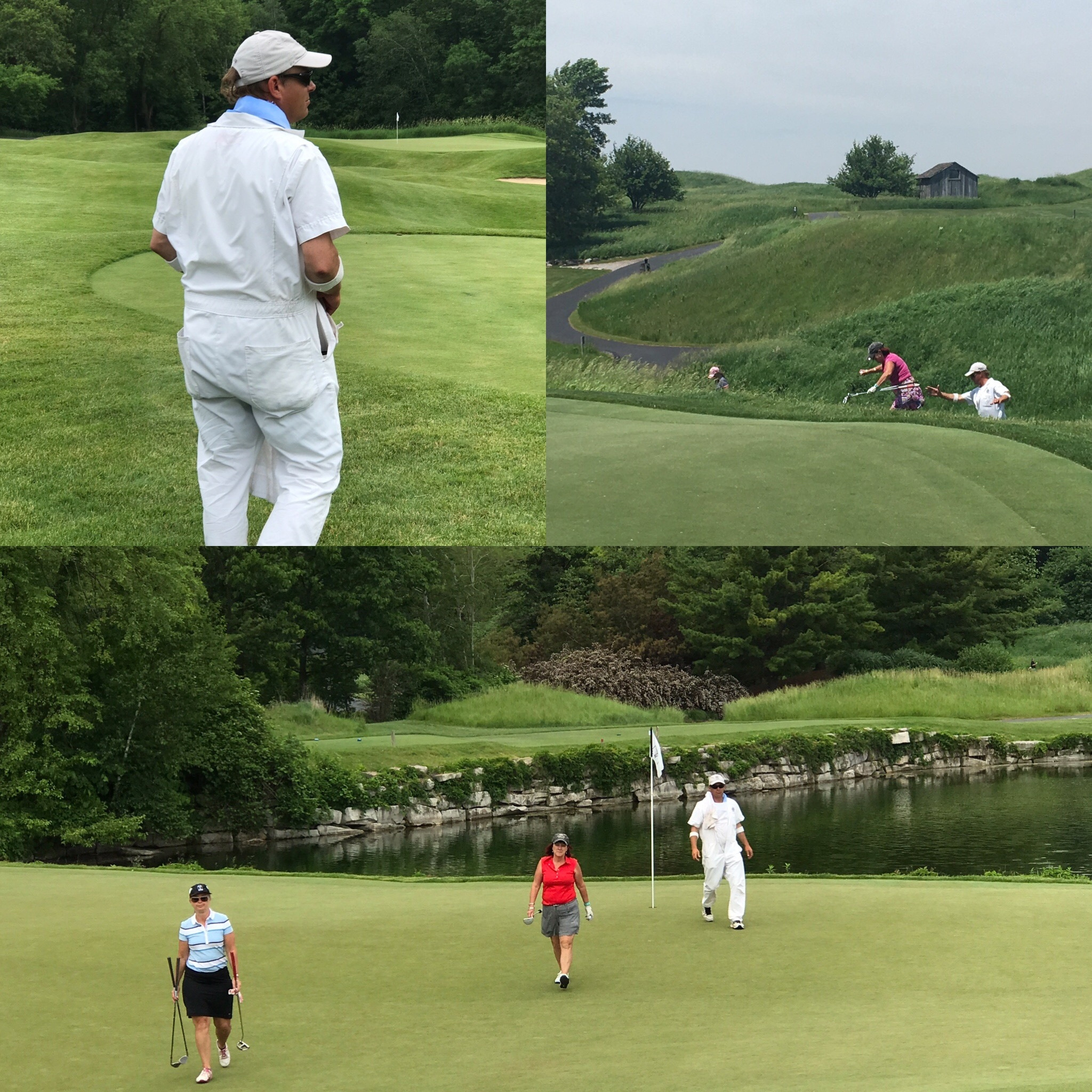 - Our last game at Kohler was on the Meadow Valley course. The back nine holes were most players'favorite, in spite of the fierce and challenging fescue for those who ventured off the fairways.